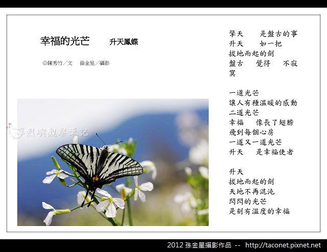 孫金星攝影作品_83.jpg