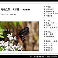 孫金星攝影作品_86.jpg
