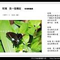 孫金星攝影作品_89.jpg