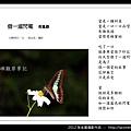 孫金星攝影作品_88.jpg