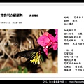 孫金星攝影作品_90.jpg