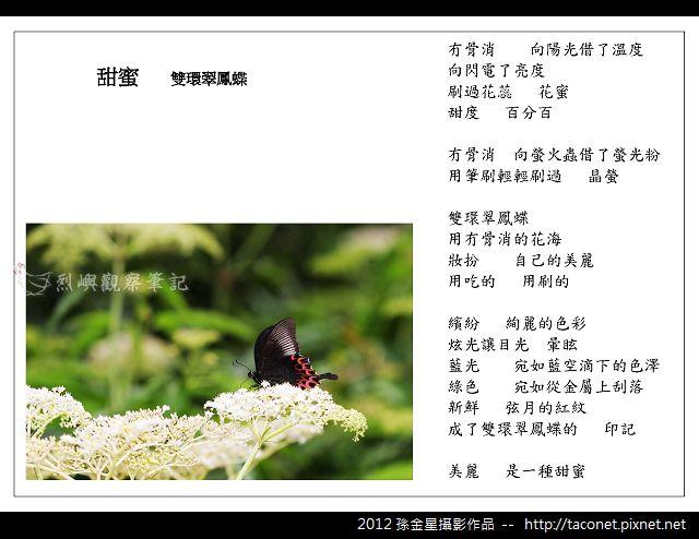 孫金星攝影作品_93.jpg