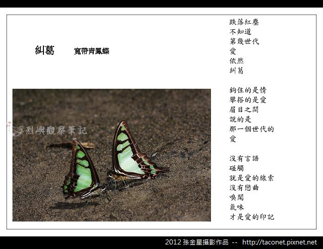 孫金星攝影作品_92.jpg