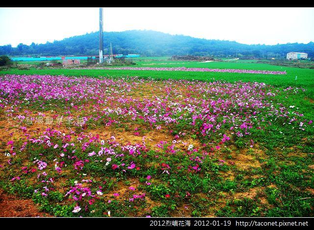 2012烈嶼花海_365.jpg