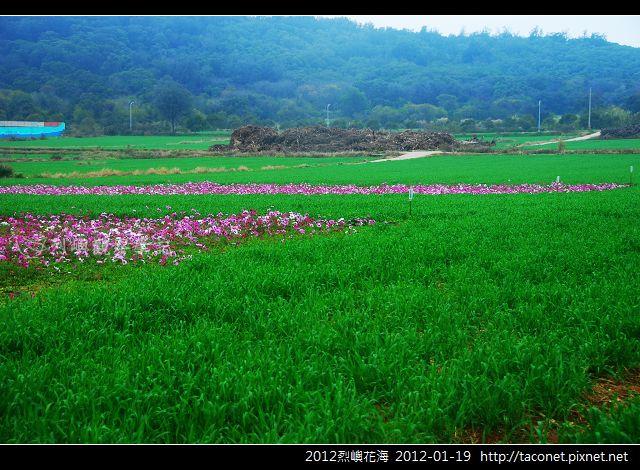 2012烈嶼花海_369.jpg