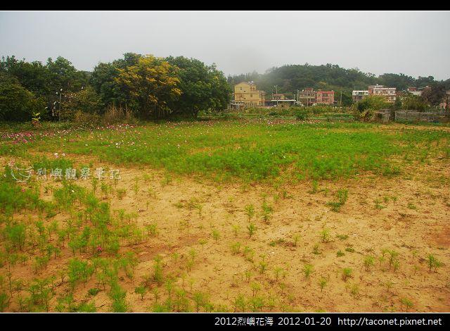 2012烈嶼花海_374.jpg