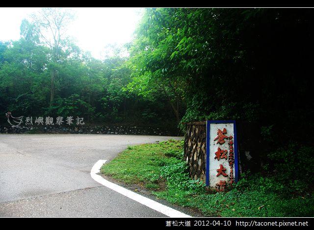 蒼松大道_05