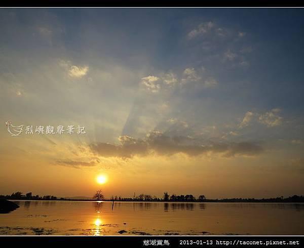 慈湖賞鳥_07