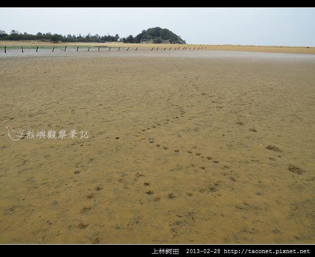 上林蚵田_11