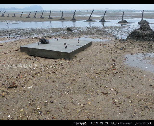 上林海灘_03