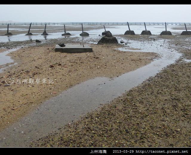 上林海灘_02