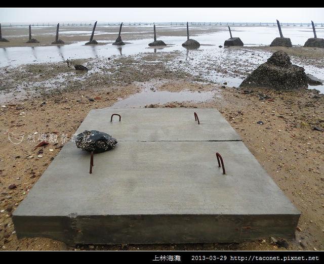 上林海灘_05
