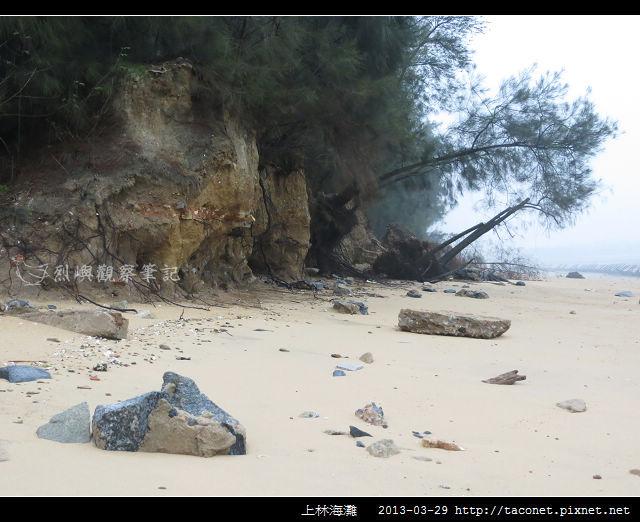 上林海灘_07