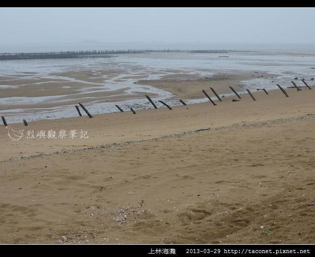 上林海灘_09