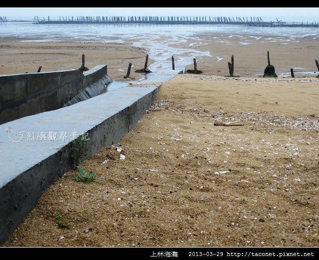 上林海灘_12