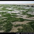 上林海岸_03