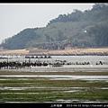 上林海岸_06