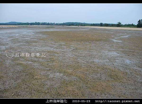 上林海岸陸化_04.jpg