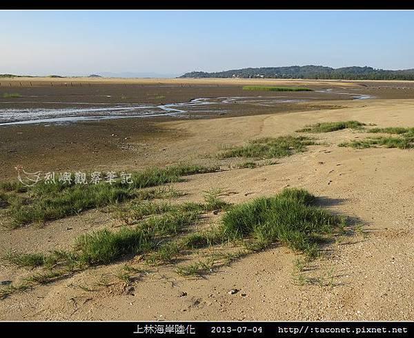 上林海岸陸化_06.jpg