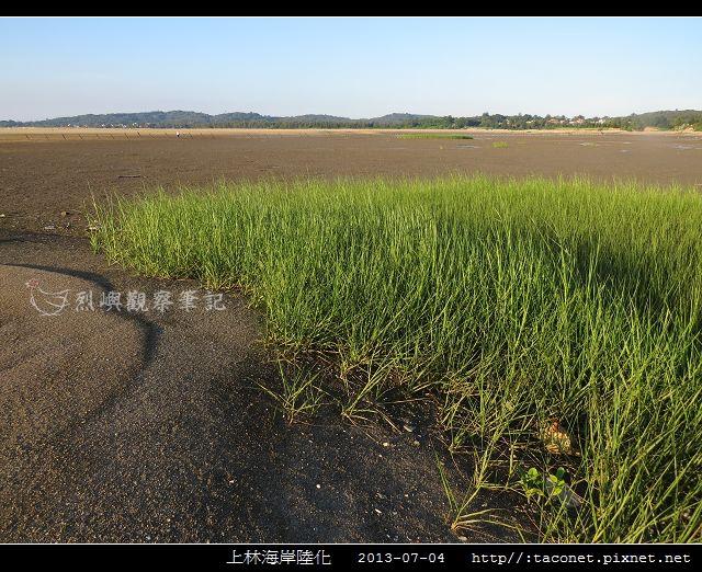 上林海岸陸化_14.jpg