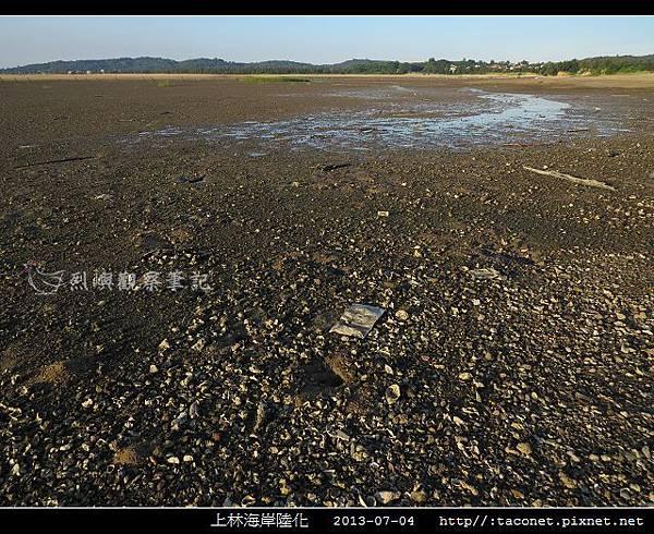 上林海岸陸化_15.jpg