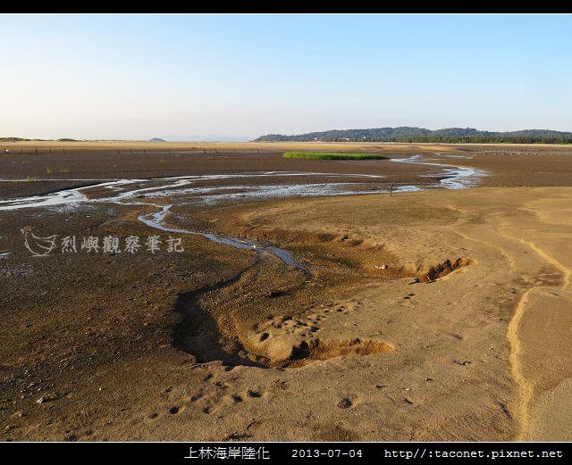 上林海岸陸化_16.jpg