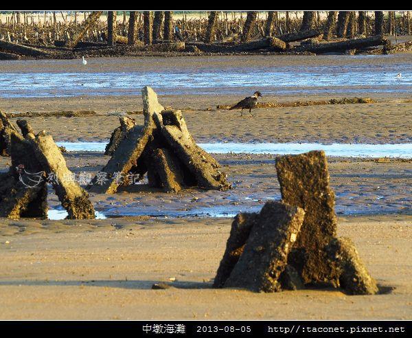 中墩海灘_11.jpg