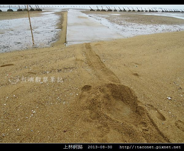 上林蚵路_09.jpg