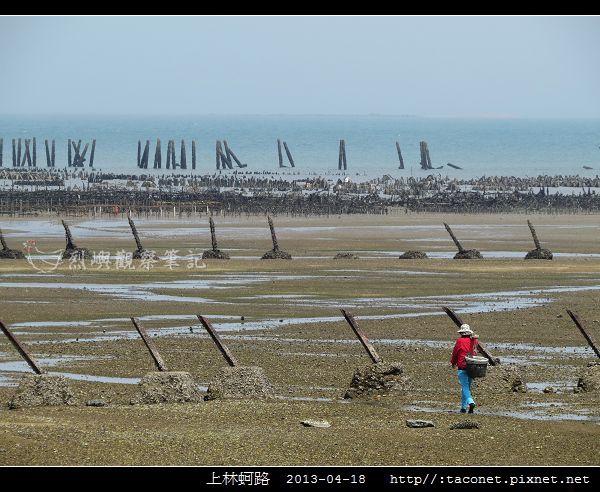 上林蚵路_11.jpg