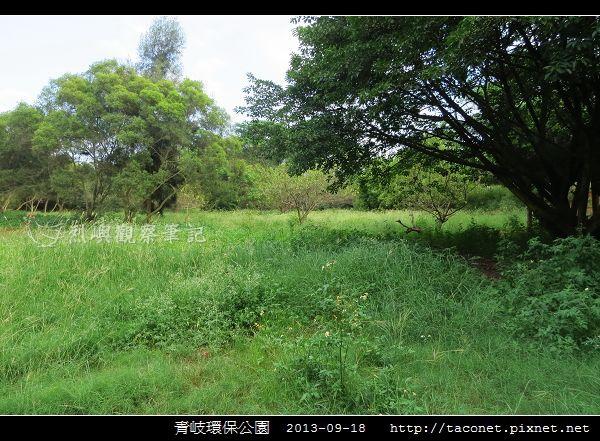 青岐環保公園_04.jpg