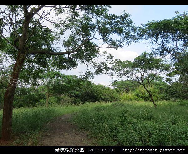 青岐環保公園_08.jpg
