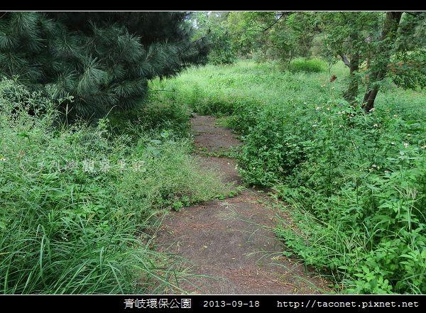 青岐環保公園_13.jpg