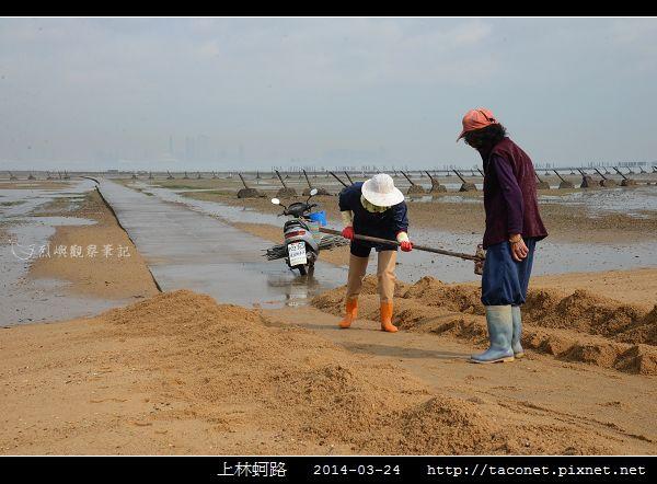 201403上林蚵路_04.jpg