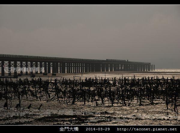 2014金門大橋_02.jpg