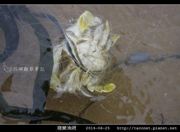廢棄漁網_03.jpg