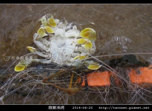 廢棄漁網_05.jpg