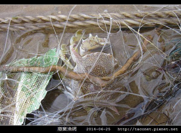 廢棄漁網_08.jpg