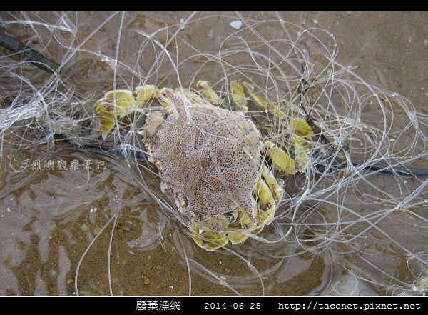 廢棄漁網_10.jpg
