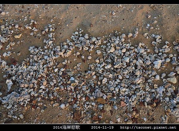 2014海岸悲歌_02.jpg