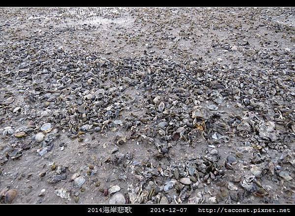2014海岸悲歌_09.jpg
