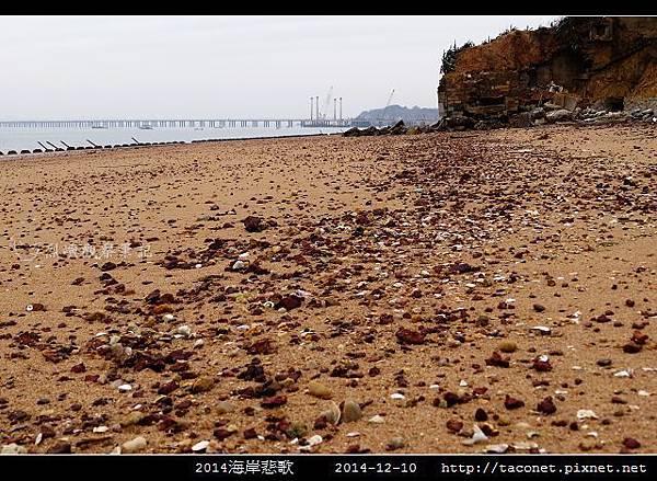 2014海岸悲歌_14.jpg