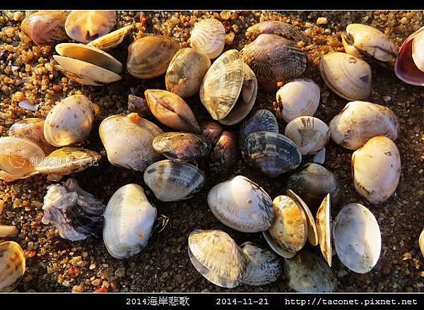 2014海岸悲歌_26.jpg