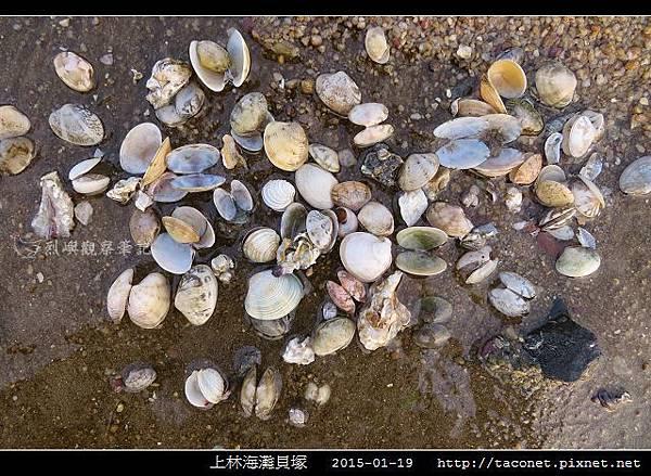 上林海灘貝塚_01.jpg