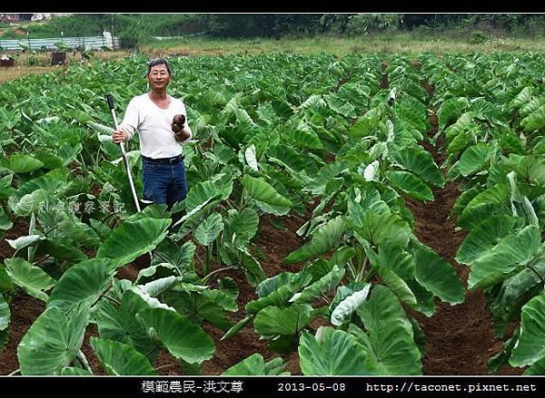 模範農民-洪文尊_02.jpg