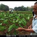 模範農民-洪文尊_05.jpg