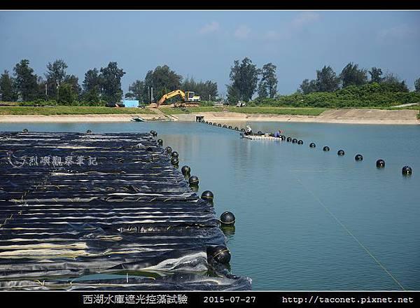 西湖水庫遮光控藻試驗_09.jpg
