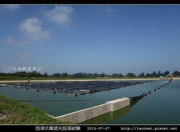 西湖水庫遮光控藻試驗_10.jpg