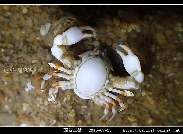 頭蓋玉蟹-03.jpg