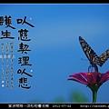 意涉閑雅-洪松柏書法展-54.jpg