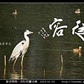 意涉閑雅-洪松柏書法展-59.jpg